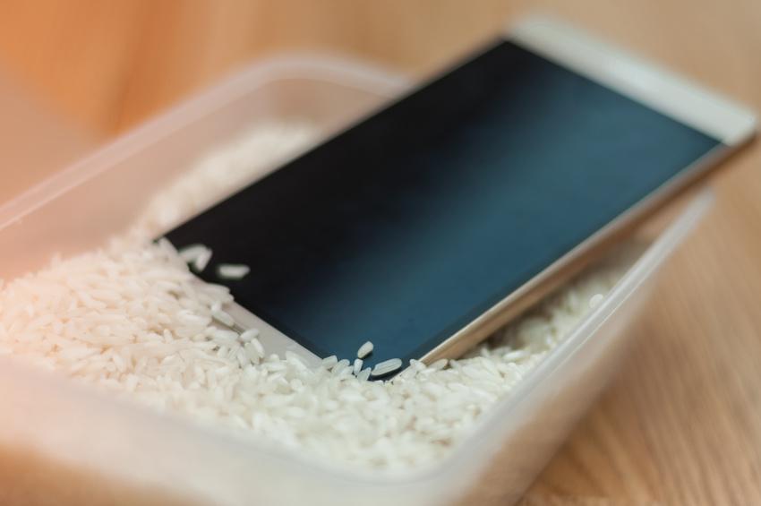 iPhone Wasserschaden Reis